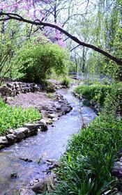Beale Memorial Garden