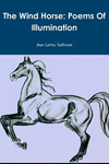 The Windhorse: Poems of Illumination