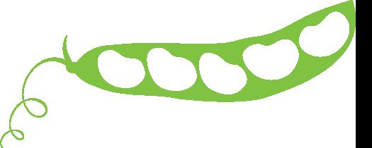 Bean image