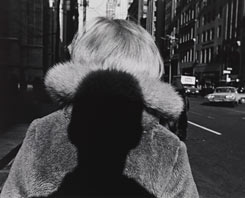 Lee Friedlander, Shadow