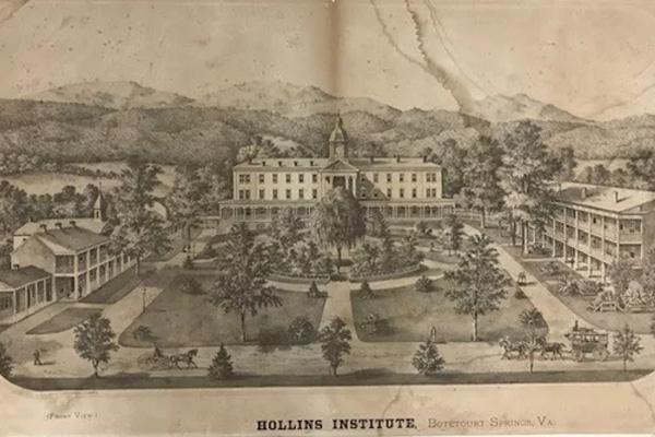 Hollins Institute