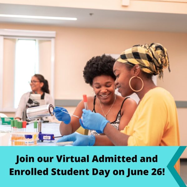 Virtual admitted student day