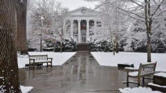 Hollins Announces Robust Calendar of Online Activities and Events for J-Term